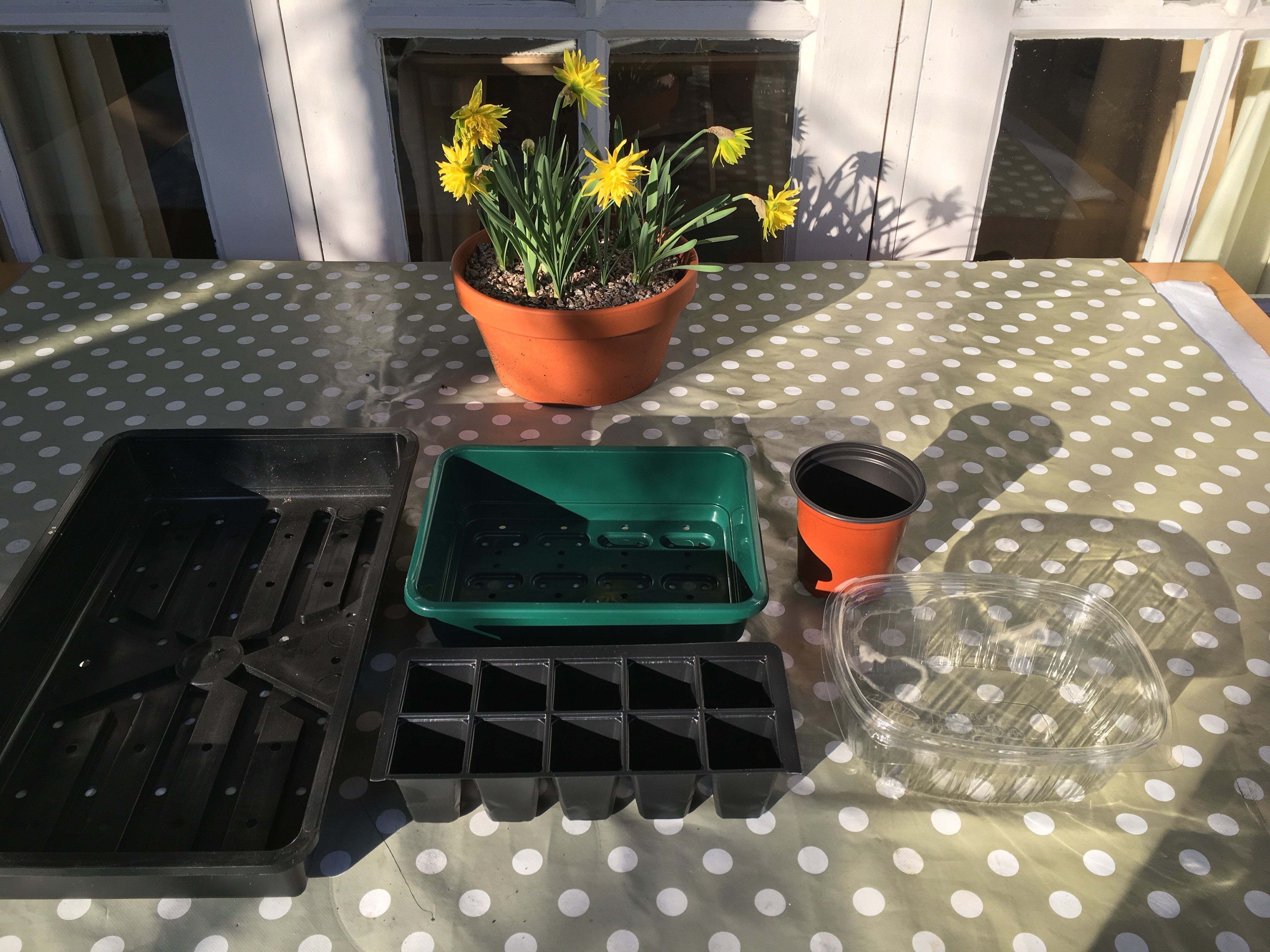 potting containers