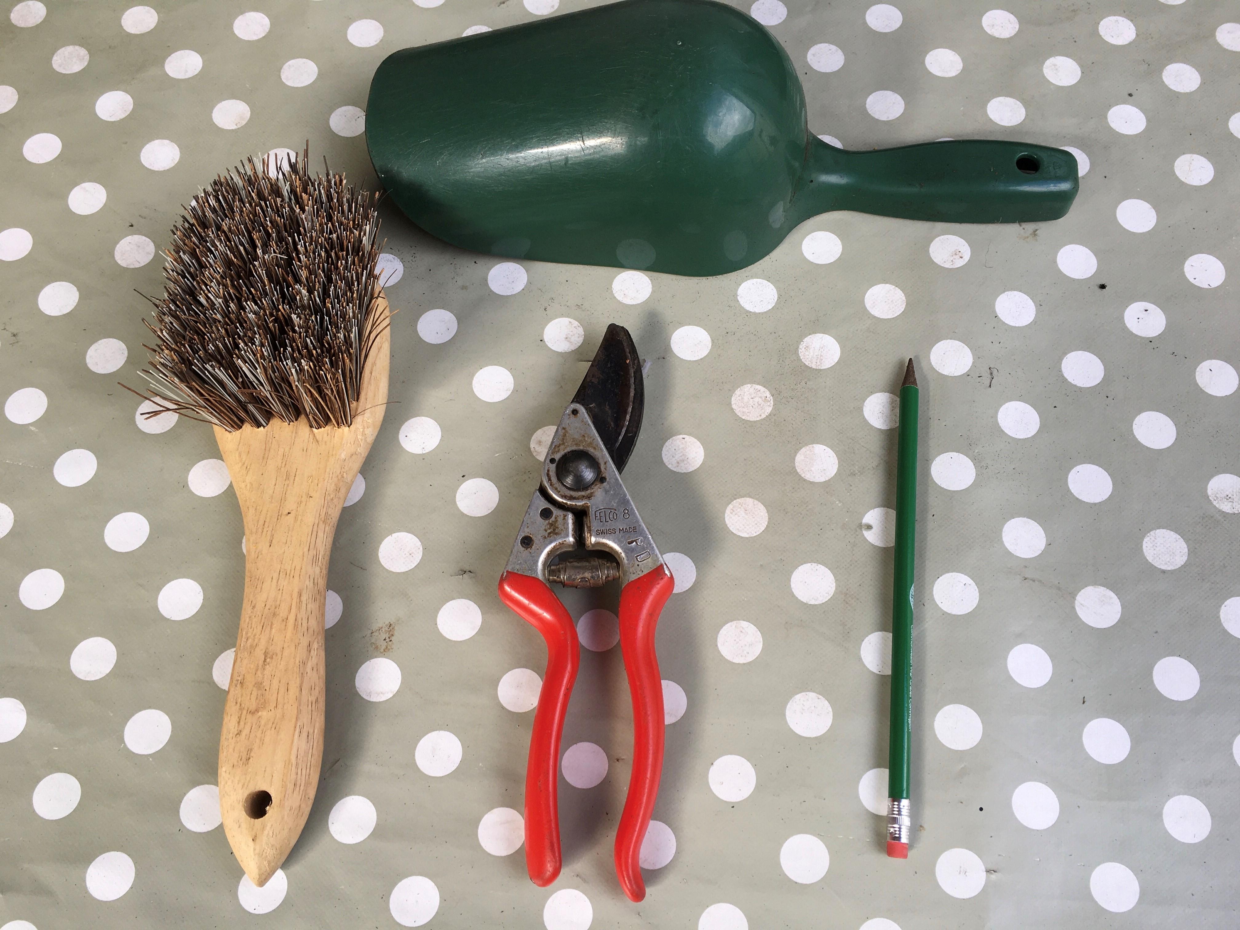 vegetable planting tools